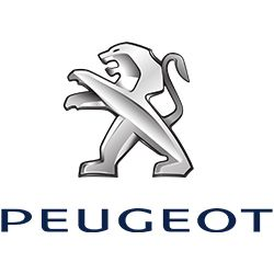 logo peugeot van equipment